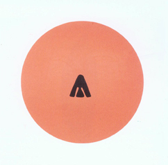 Beautiful (2002) (gloss paint on aluminium) Gary Hume