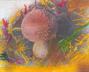sigpol010_polke_untitled_mushroom_large