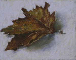 A dead leaf 2002 - pastel on board