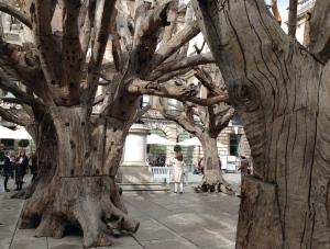 Tree 2009-10