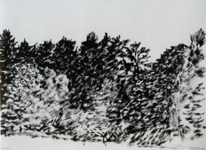 Trees at Evian 1997 Sumi ink